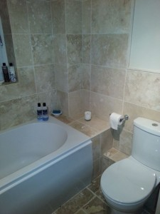 2013.02 - Otter Bathrooms - Feniton_Bath_Tiled_Wall_Toilet